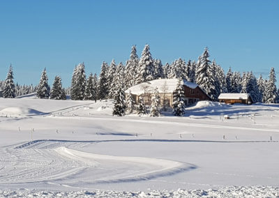 paysage maison hiver
